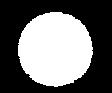 Circulo blanco-01.png