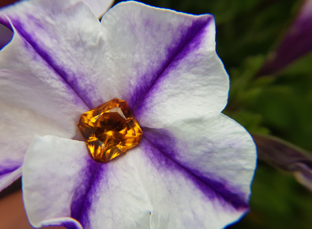 Fall in Love with Your November Birthstone