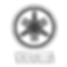Triumph salon auto le havre 2017