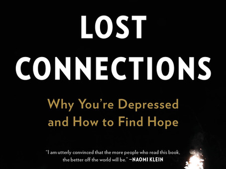 Book Review: Lost Connections