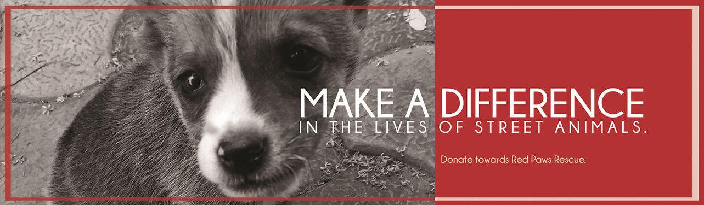 Donate towards animal rescue