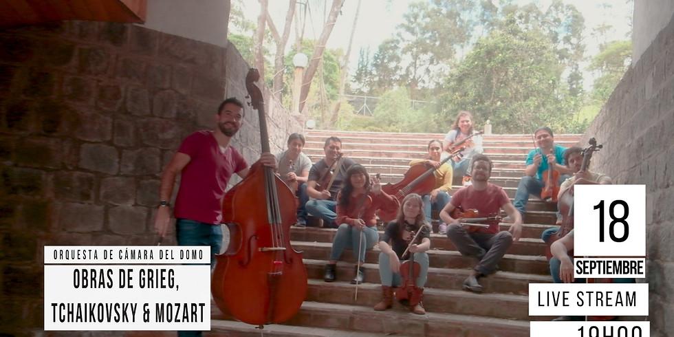 Orquesta de Camara del Domo, Obras de Grieg, Tchaikovsky y Mozart