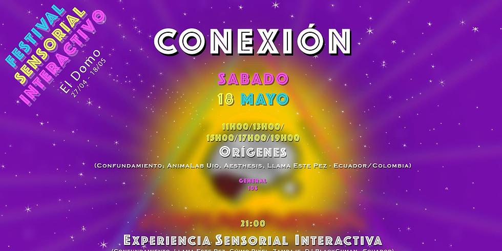 """Festival Sensorial Interactivo """"Conexión"""" (1)"""