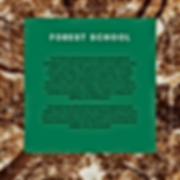 SENCO-Forest.png