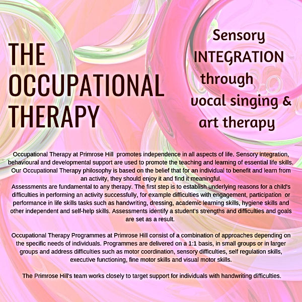 SENCO-THE OCCUPATIONAL THERAPY.jpg