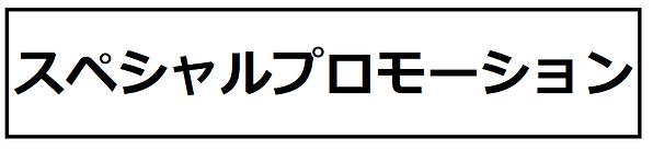 スペシャルプロモーション.png