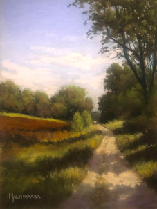 Road by the field