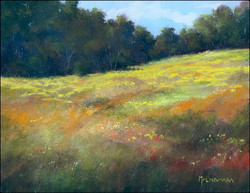All the meadows flowers