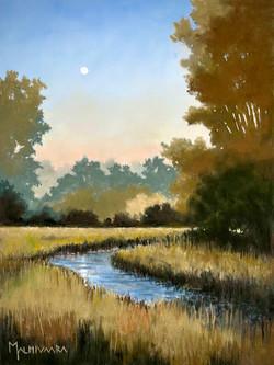 Midsummer night creek