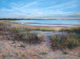 Evening light at sand dunes