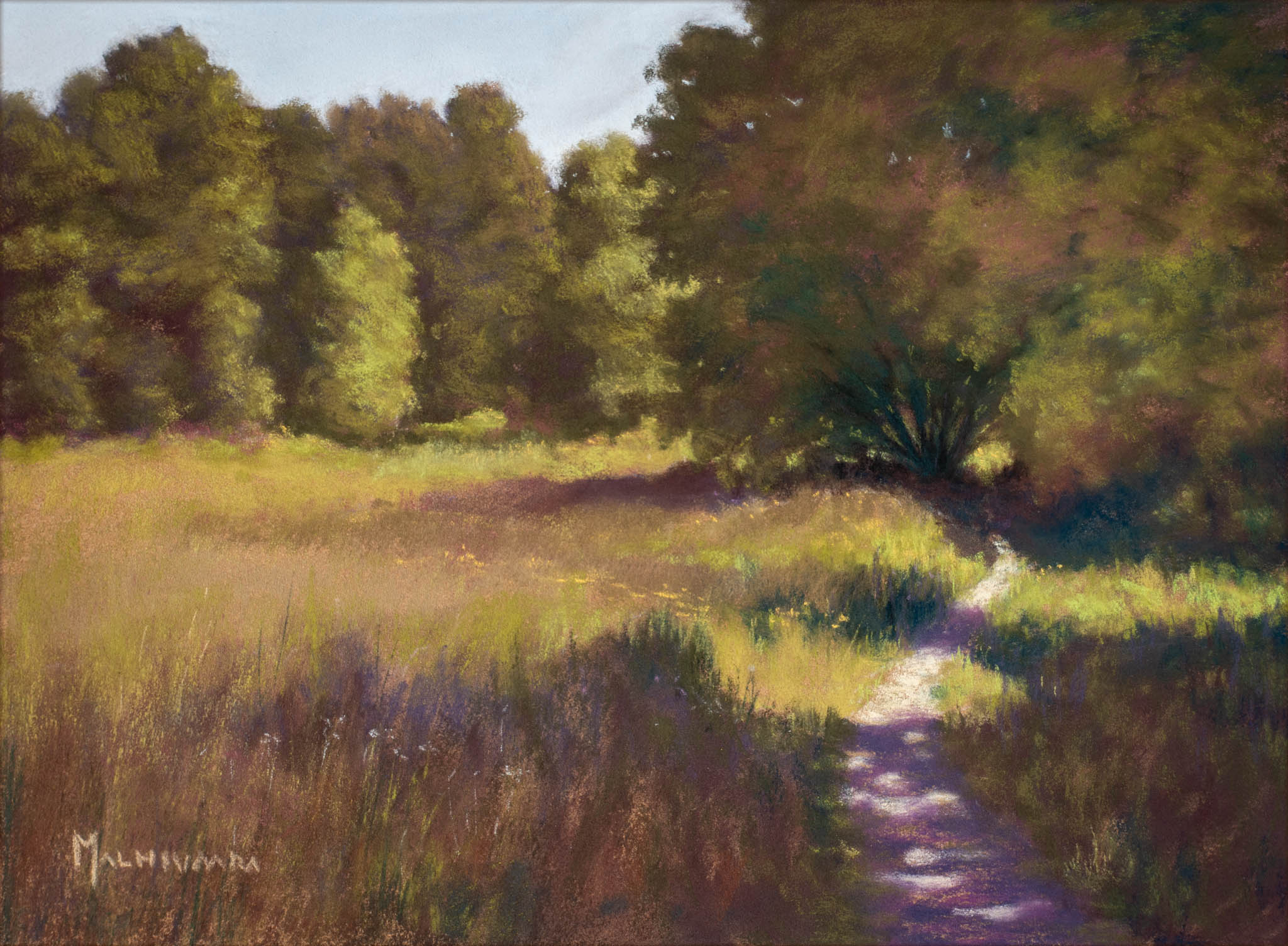 Path by the meadow