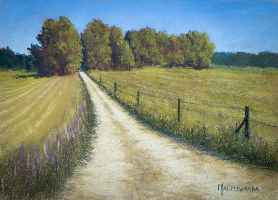 Dirt road between the fields