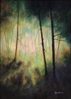 Forest's Edge