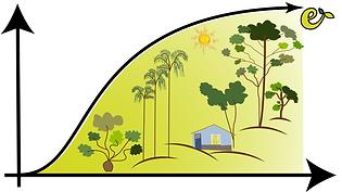 Economia Verde_50505_Adriana Abelhao_PSol