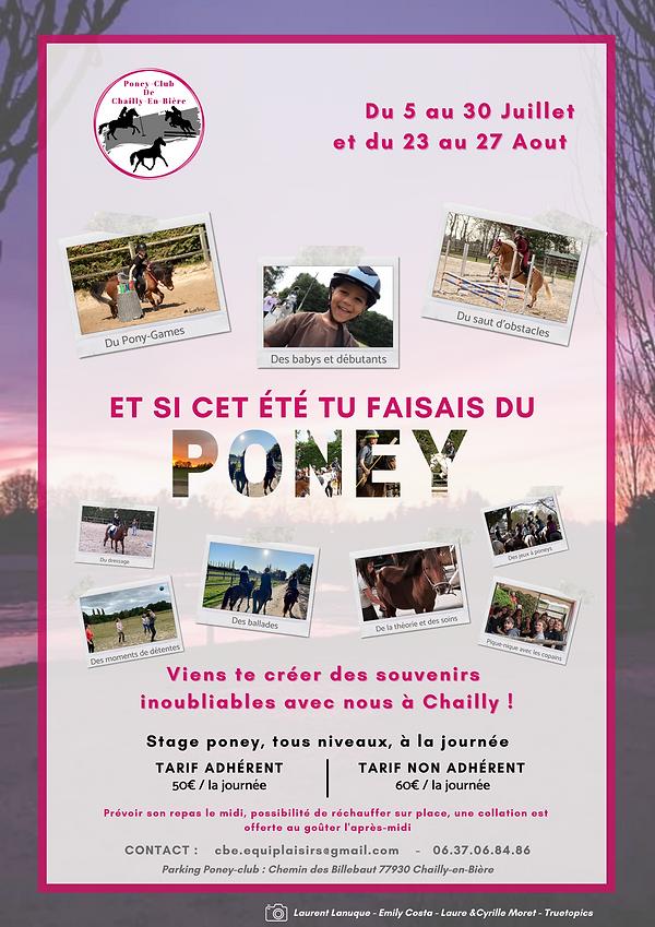 Stages Poney cet été (1).png