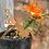 Thumbnail: Garden Fairy pick