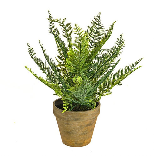 Artificial fern in aged pot