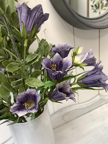 Skye Belle flowers - lilac