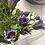 Thumbnail: Skye Belle flowers - lilac