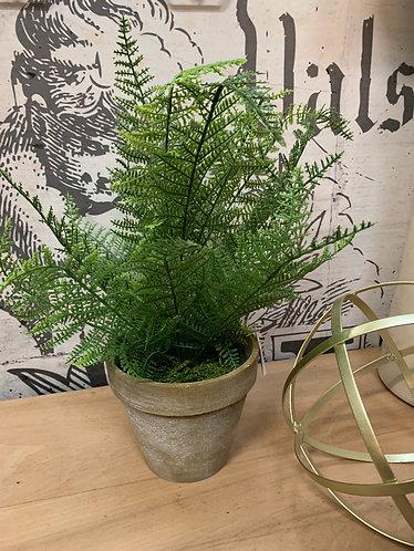 Artificial fern in aged pot