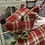 Thumbnail: Traditional tartan reindeer