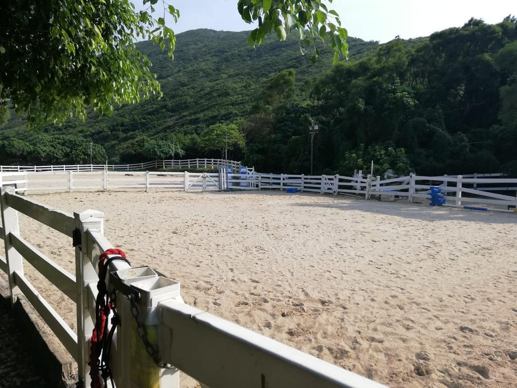 Pony paddock