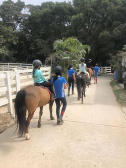 Pony camps