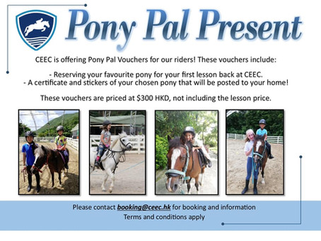 Pony Pal Present