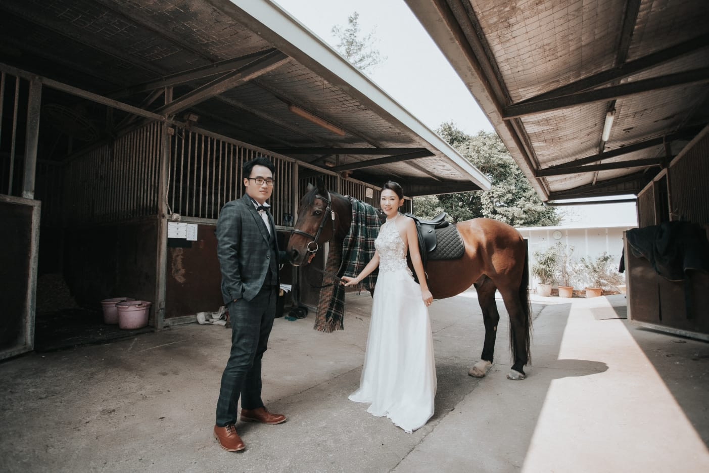 Horse wedding photo in Hong Kong