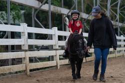 4-5 yrs old Pony ride