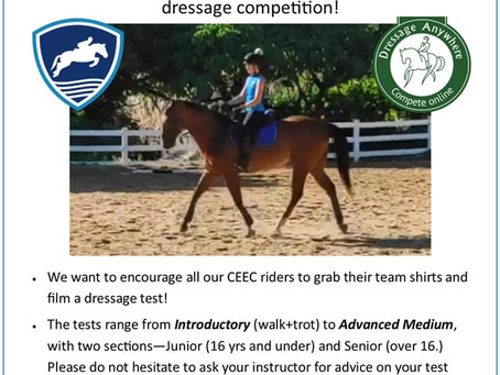 The HKEF partner with Dressage Anywhere for our very own Hong Kong competition!