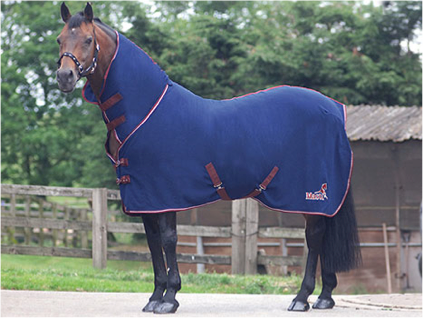 006 Wembley Full Neck Show Rug