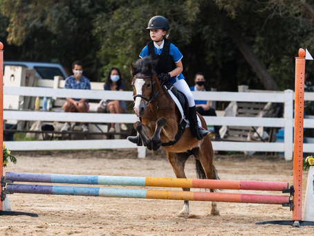 Clear round jumping competition