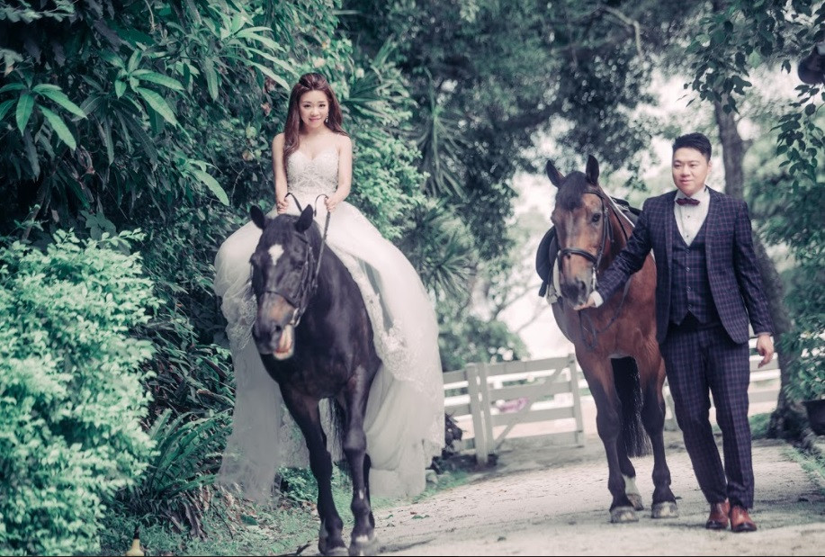 Wedding photo shooting with horses Percy and Pye