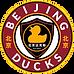 New Ducks Logo 2020.png