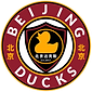 New Ducks Logo 2020.png