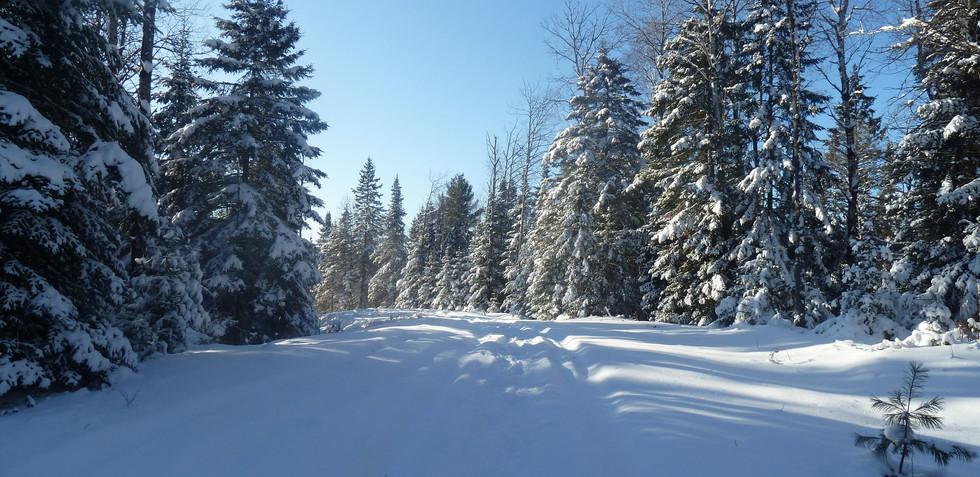 Chalet à louer au Québec   face au lac   4 saisons Le Cocooning L'Ascension   Sentier de raquette