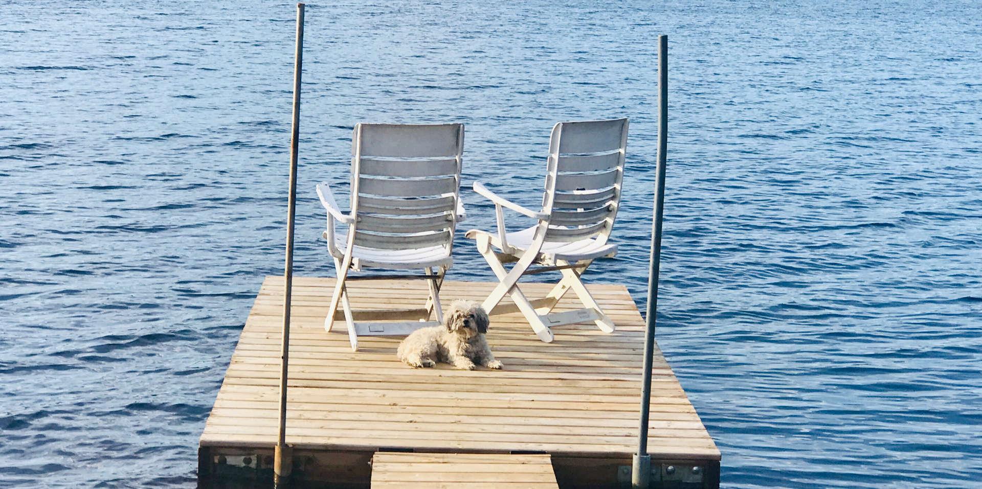 Chalet à louer au Québec   face au lac   4 saisons Le Cocooning L'Ascension   Le quai