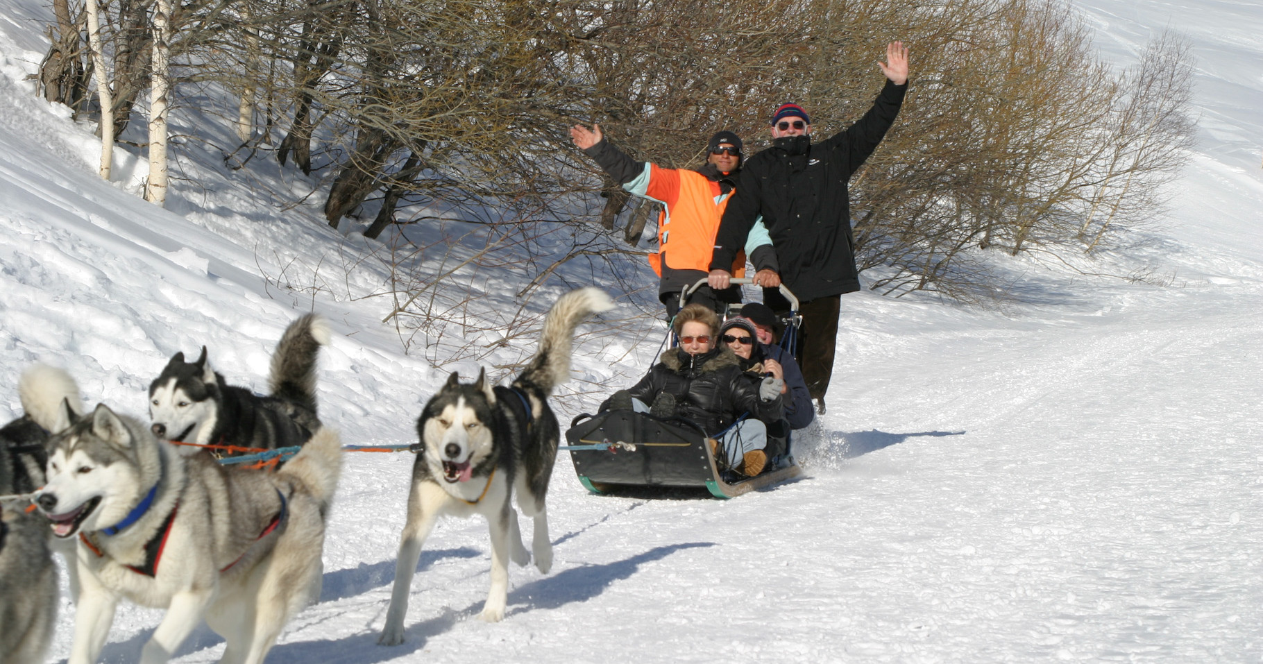 Chalet à louer au Québec | face au lac | 4 saisons Le Cocooning L'Ascension | Promenade traineau à chien