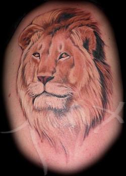 Lion- Full Color