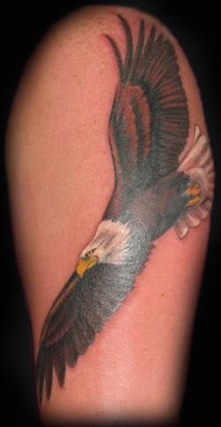 Mandy's Eagle