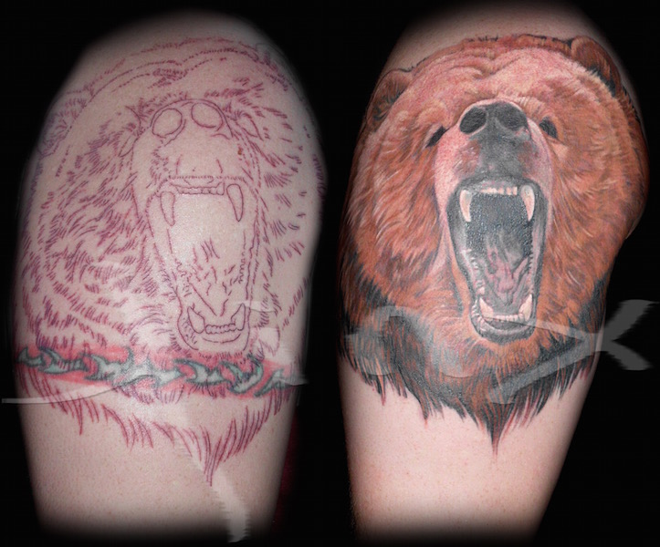 Bear Cover Up