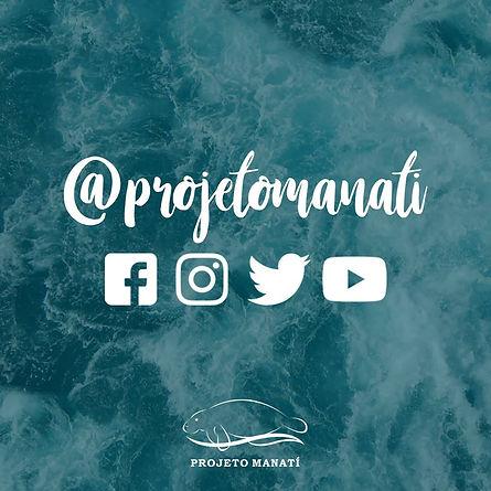 Projeto Manatí - Mamíferos Marinhos