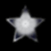 PlatinumStarArtboard 1.png