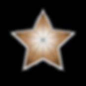BronzeStarArtboard 1_edited.png