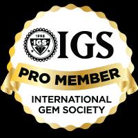 IGS Pro.png