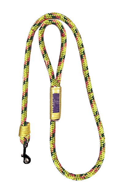 leash_yellow.png