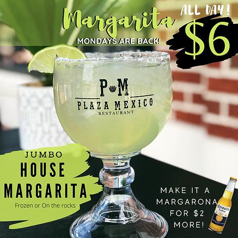Margarita (1).PNG