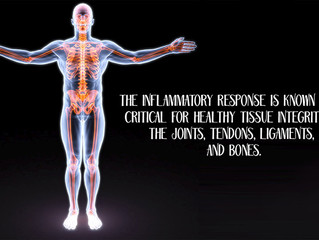 Musculoskeletal health
