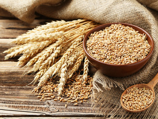 Wheat allergies versus celiac disease. Know the difference. It could save your life.